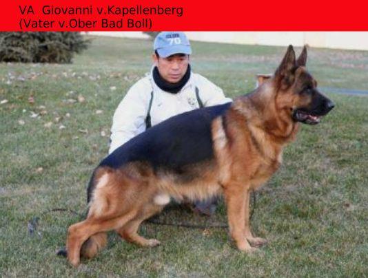 VA Giovanni v. Kapellenberg